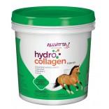 Hydrocollagen Equus 1.2 Kg - Allvitta