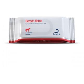 Vacina Herpes Horse Estojo c/ 10 Fr 2 mL - Dechra