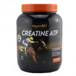 Creatine ATP 1 kg - Organnact