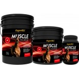 Muscle Horse 15 kg