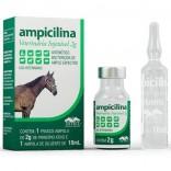 Ampicilina Veterinaria Injetavel 2 g - Vetnil