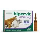 Hipervit 20.000 Mcg  de 5 mL - Vetnil